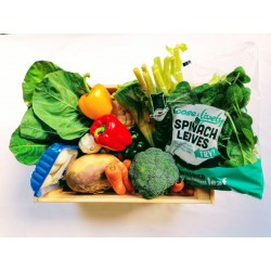 Slimmers Speed Vegetable Box S